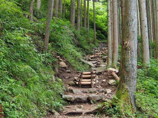 20150726・御岳山2-12