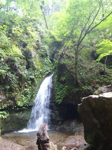 20150726・御岳山2-22