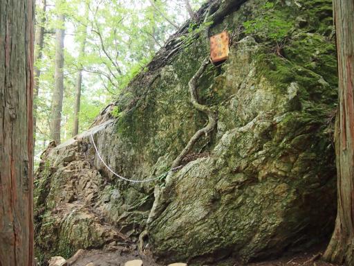 20150726・御岳山2-23
