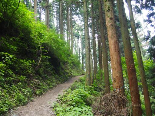 20150726・御岳山3-01