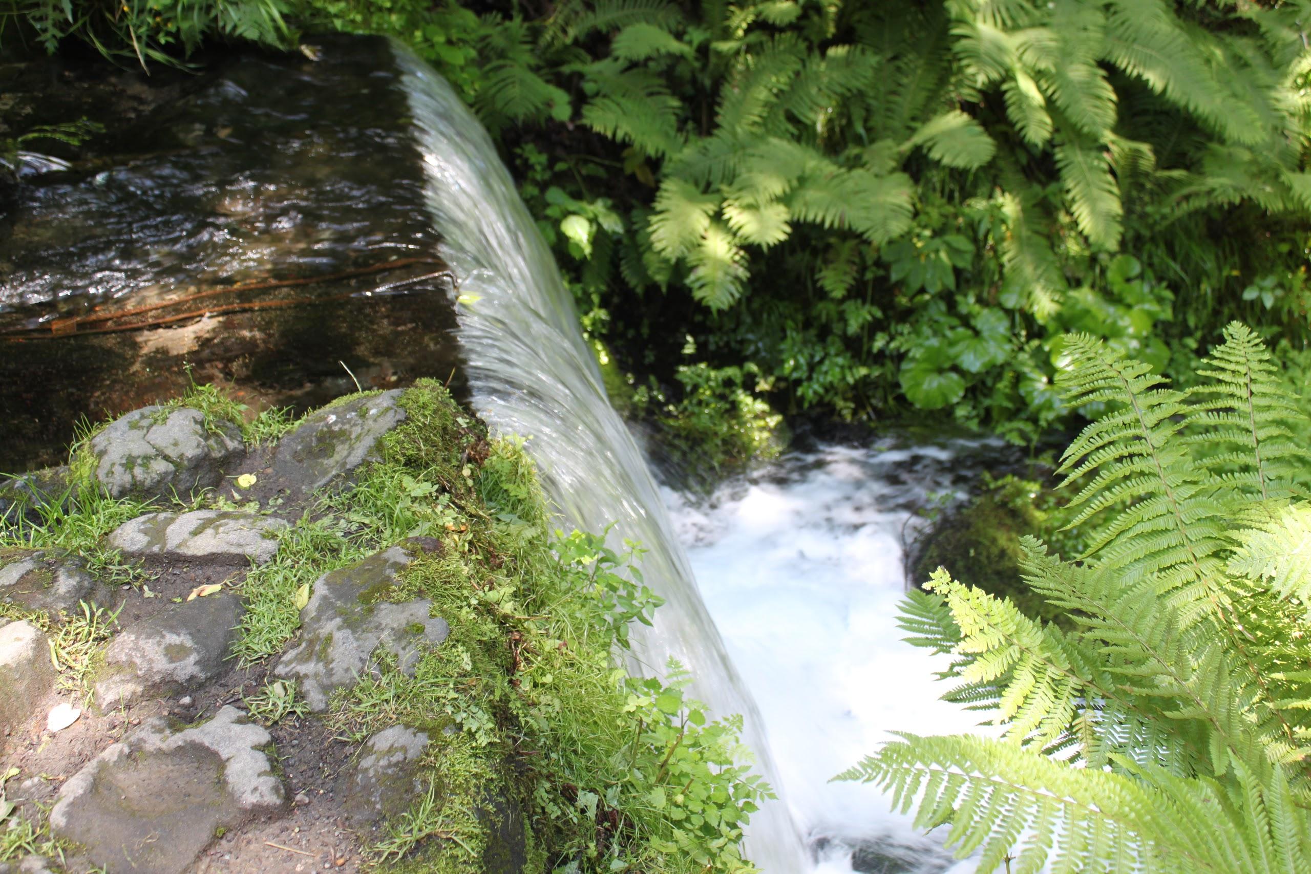 白糸の滝②VLFUSbtOY4jILtZaEfgwagTU8mNXScgU0VJdycCaoj_FlYwOVOnhJOXO02eKt7HBCvdydcn_=w2560-h2560-rw