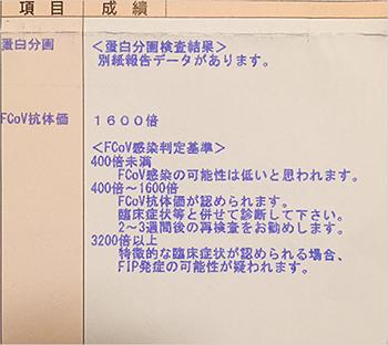 blog_000005757.jpg