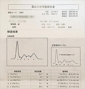blog_000005758.jpg