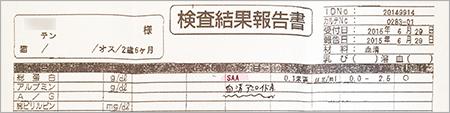 blog_000005798.jpg