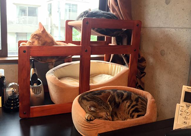 blog_000005834.jpg
