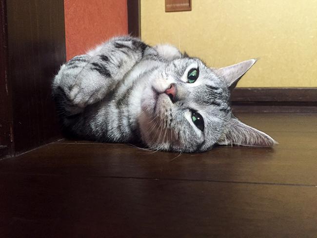 blog_000005926.jpg