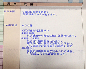 blog_000006030.jpg