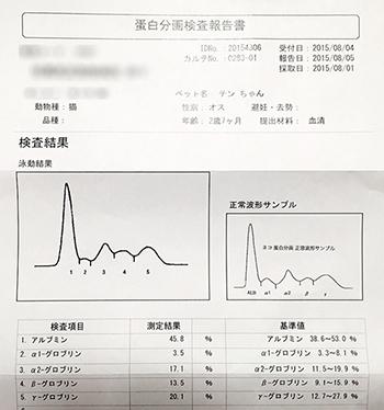 blog_000006031.jpg