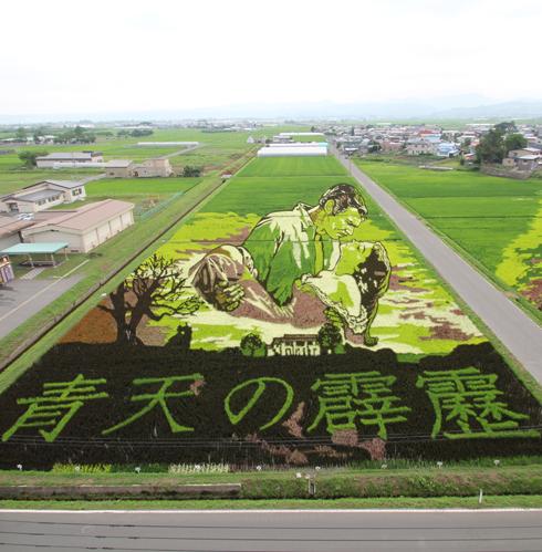 田舎館村田んぼアート2015(1)-5
