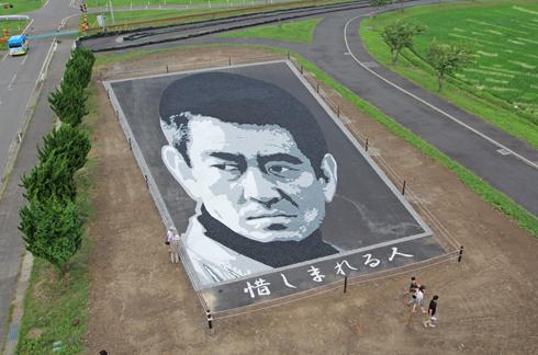田舎館村田んぼアート2015(2)-4