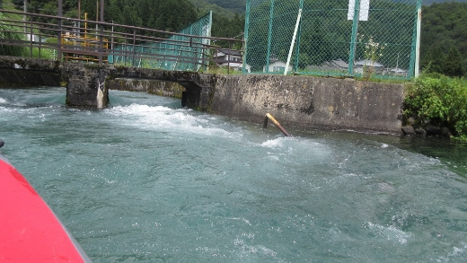 7月19日今年初めての青木湖カヌー (3) (520x293)