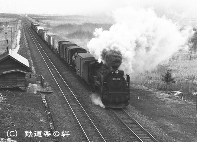 750322沼ノ端1M
