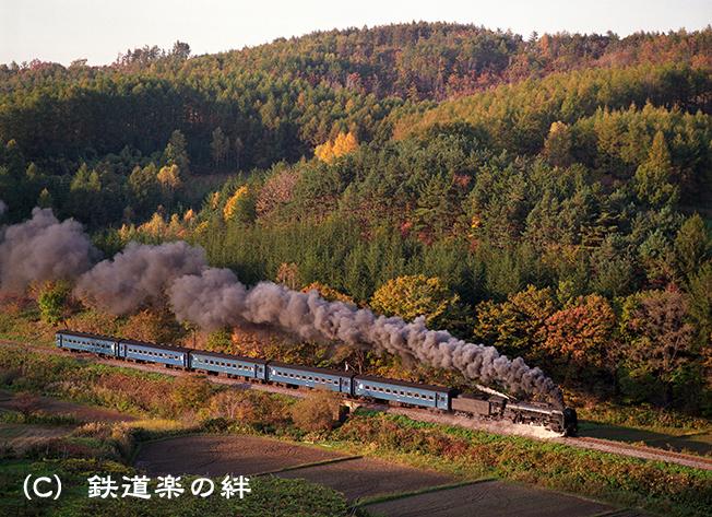 901027金五郎山N