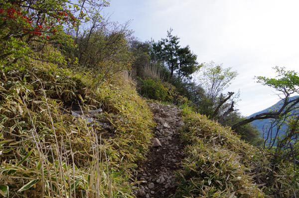 鈴ヶ岳04