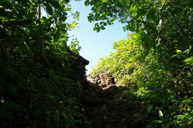 谷川岳09