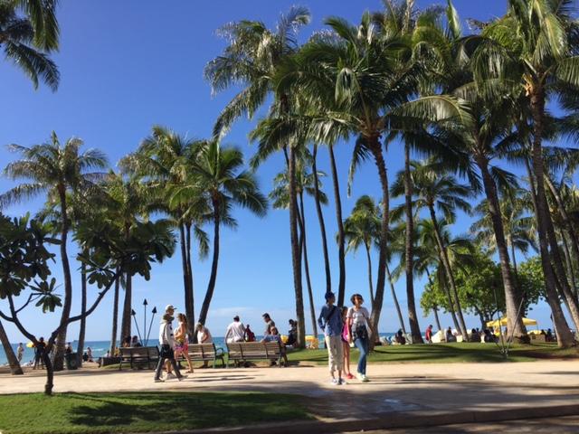 hawaii2015 (2)