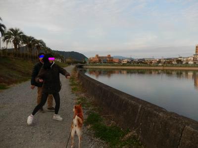 snap_tikagenoko414_201412010431.jpg