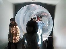 NCM_2505.jpg