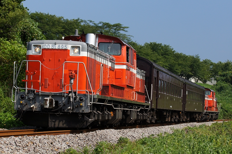 DD51-895