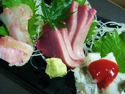 カツオ・ハモ・平目1 (3)