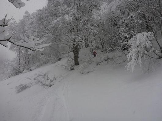 大滝ー7P1030646
