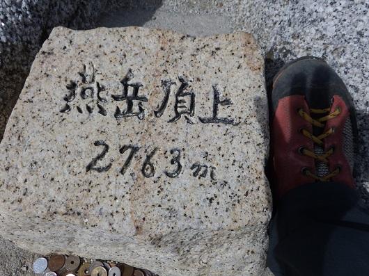 つばめ13-DSCF2587