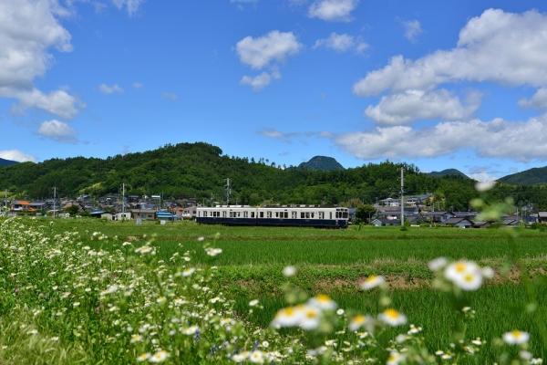 2015年6月28日 上田電鉄別所線 八木沢~舞田 1000系1004編成