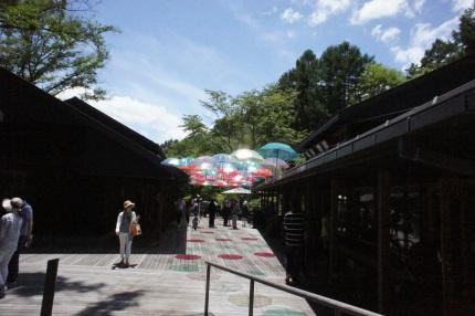 嵐丸 2015.7.30-5