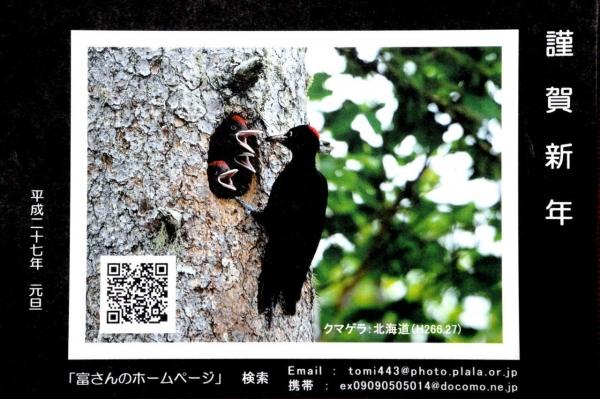 141230_194511-DSCN9590.jpg