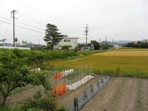 旧東海道 大平橋跡東詰付近