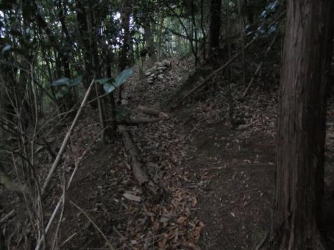 薬師山登山道
