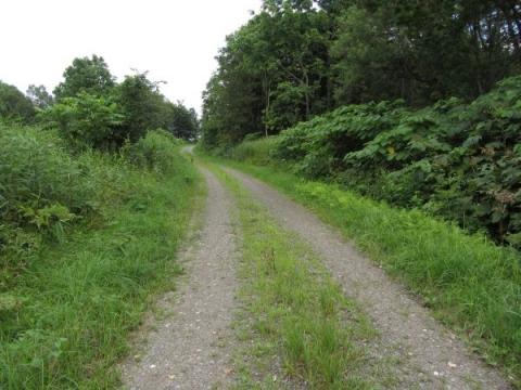 大曲の旧国道