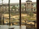 中庭側 グリーナリ―ビュー