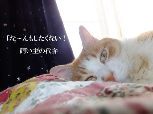 2015-6gatsu-26nichi-007.jpg