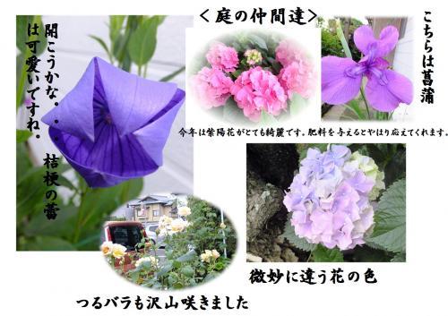 縺ッ縺ェ_convert_20150617212710