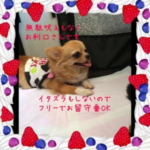 fc2blog_2015072221373410b.jpg