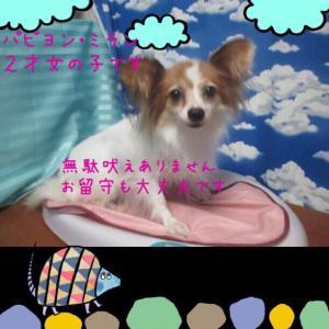 fc2blog_20150725144342df2.jpg