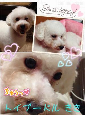 fc2blog_201508022237110e6.jpg
