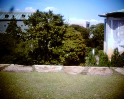 天守台跡から東京スカイツリー:Entry
