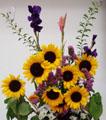 夏の花 ひまわり