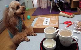 お茶飲んで一息…2