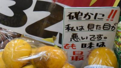 20150721_12_47a.jpg