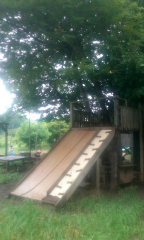 150702gonta-treehouse-suberidai.jpg