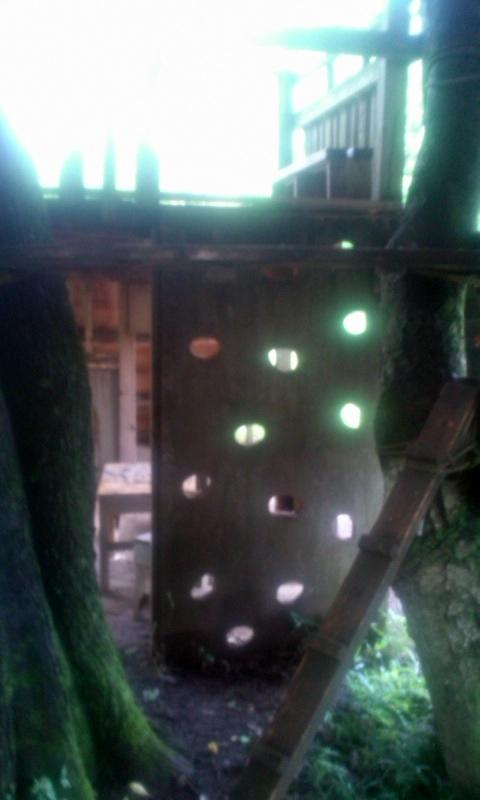 150702gonta-treehouse2.jpg
