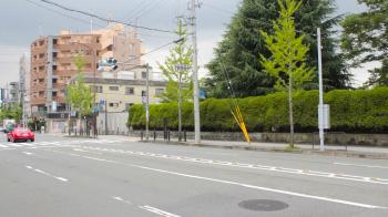 s-_MG_0418.jpg