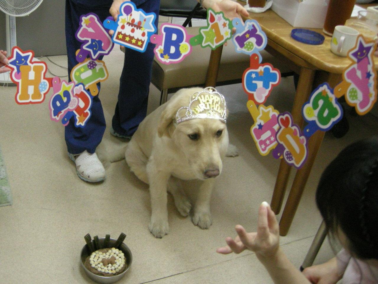 サニー誕生日