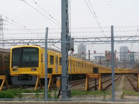 黄色い西武線