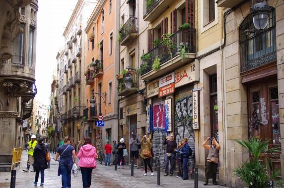 27.05.20~一眼 スペイン 398_ks