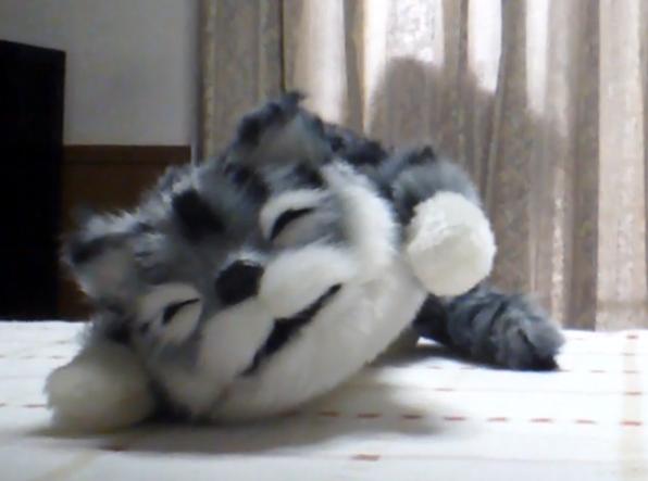 笑い転げる猫の修理(音声再生換装)外観