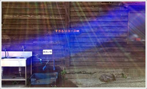 2015miyamakirishima028.jpg